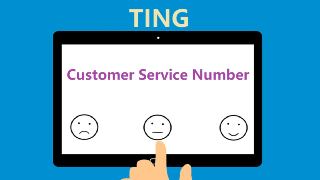 TING Customer Service Number