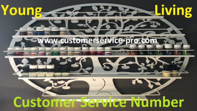 Young Living Customer Service Number