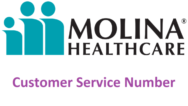 molina healthcare phone number